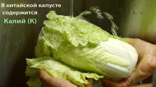 Польза китайской капусты, возможный вред, кому