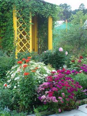 Какие бывают цветники