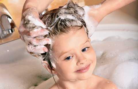 Заболевание, как правило, вызывают вида паразитовпедикулез головывши обитают в волосах и на коже головы, педикулез лобкавши и гниды паразитируют в волосистой лобковой и паховой области, педикулёз платянойвши живут в одежде, постельных принадлежностях человека