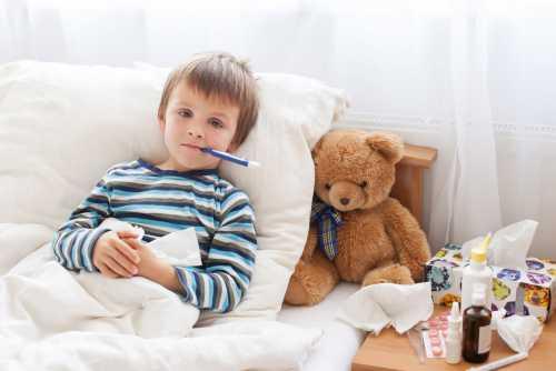 Мишки способствуют поддержанию здоровья пищеварительной системы вашего ребёнка
