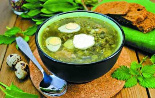 Рецепты суточных щей: секреты выбора ингредиентов