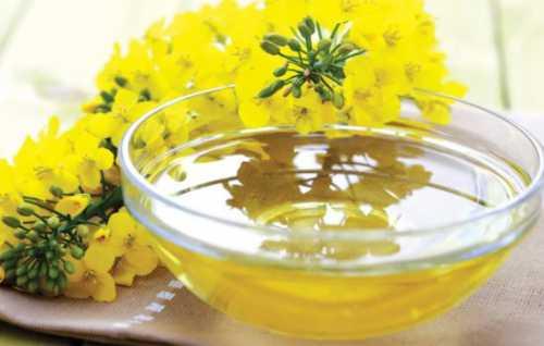 Польза чесночного масла, возможный вред, кому